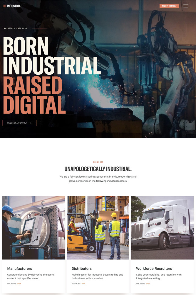 Industrial Strength Marketing Landing page screenshot