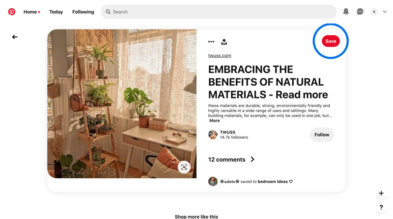 Pinterest Post details screenshot